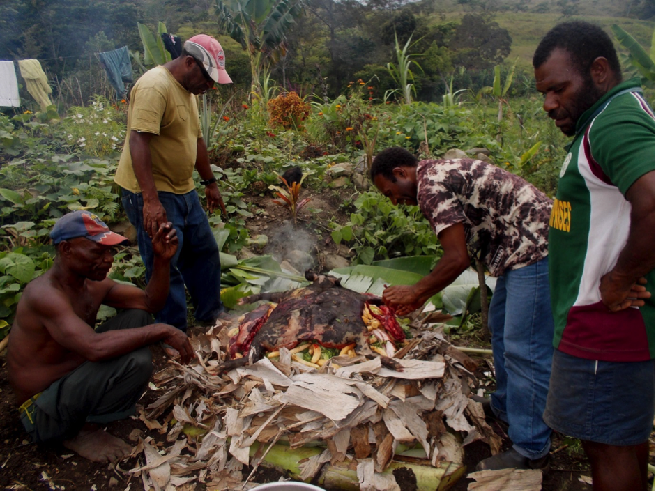 Four men surround a traditional Mumu, which is an earth oven using hot rocks to cook meat