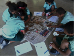 A group of school children doing an activity involving sorting rocks into piles and measuring things